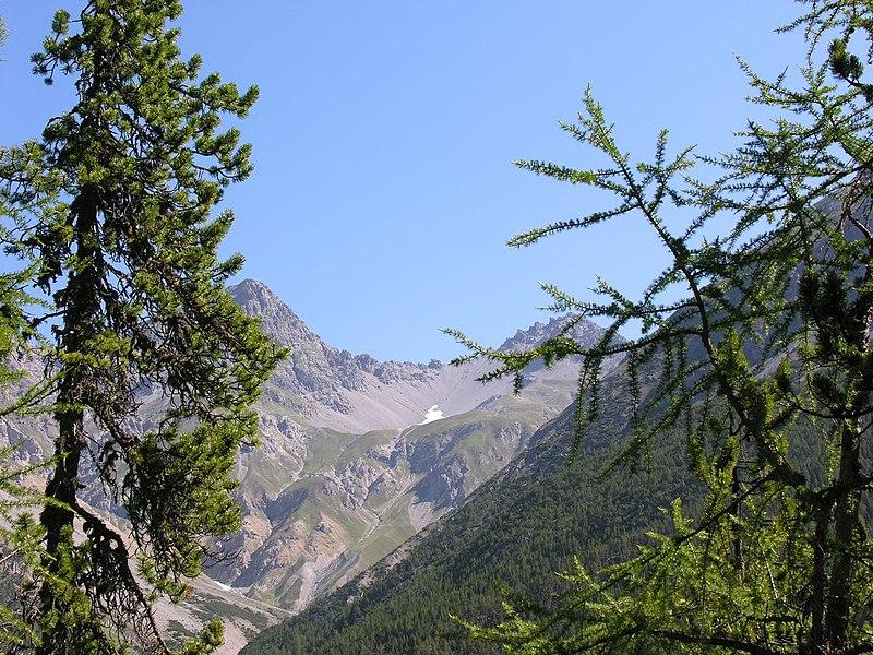 File:Swiss National Park 080.JPG