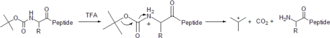 Peptide synthesis - Boc cleavage