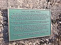 THE ATLANTIC WALL, HANKLEY COMMON 02-08 20150208 123332.jpg