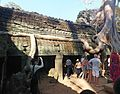 Ta Prohm temple - panoramio.jpg