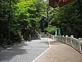 Tado taisya Shrine , 多度大社 - panoramio - z tanuki (10).jpg