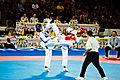Taekwondo at the 2015 Pan American Games.jpg