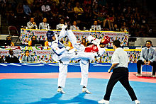 In mississauga was the venue for the taekwondo competitions