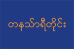 Taninthayidivisionflag.png