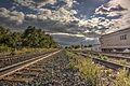 Thamesville railway tracks.jpg