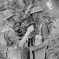 The British Army in Malaya 1941 FE343.jpg