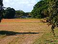 The Football Grounds 2 (3225103486).jpg