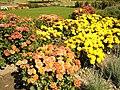 The TNU Botanical Garden in Simferopol, Crimea, Ukraine 07.JPG