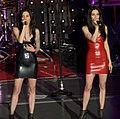 The Veronicas 2014.jpg