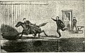 The assassination of Abraham Lincoln - flight, pursuit, capture, and punishment of the conspirators (1901) (14802773513).jpg