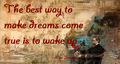 The best way to make dreams come true is to wake up.png