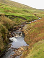 The burn at Channerwick - geograph.org.uk - 583636.jpg