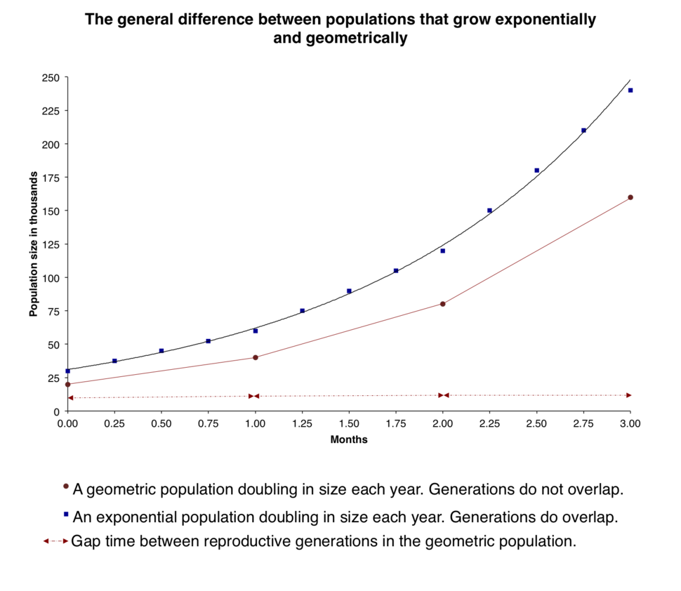 The general difference between populations that grow exponentially and geometrically