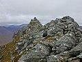 The top of Sgurr a' Bhealaich Dheirg - geograph.org.uk - 484094.jpg