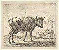 Three Cows, from Different Animals MET DP828085.jpg