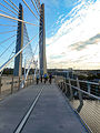 Tilikum Crossing - bicycles.jpg