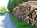 Timber Extraction - geograph.org.uk - 17197.jpg