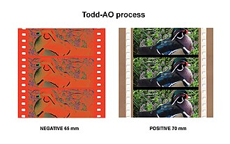 Todd-AO - Figure 1. Todd-AO: 65 mm negative and 70 mm positive