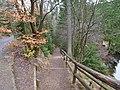 Trail at Silberteich 01.jpg