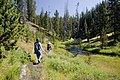 Trail follows Shoshone Creek (3943874445).jpg