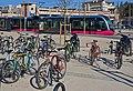 Tramway de Dijon DSC 0238.JPG