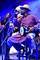 Transglobal Underground Fanfare Tirana Horizonte 2015 4866.jpg