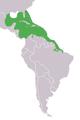 Trichechus manatus range map.png