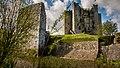 Trim Castle in May.jpg