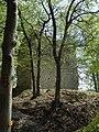 Turm Aach 1.jpg