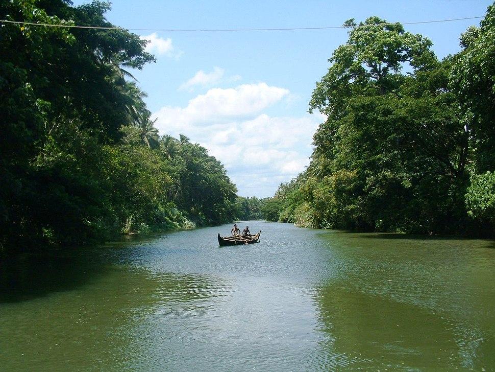 Tvm-veli-akkulam-backwaters3