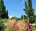 U.S. Botanic Garden in August (23796644965).jpg