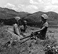 U.S. Marines in the Korean War 002.jpg