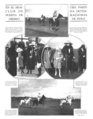 UK vs Spain Polo match.png