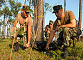 US Navy 070607-N-0553R-006 Seabee disaster recovery team members prepare to move a simulated casualty during a training evolution at Naval Construction Battalion Center.jpg
