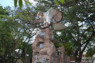 University of Southeastern Philippines - The University Eagle at the USeP Obrero Main Campus