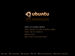 Ubuntu Linux boot Screenshot (english language)
