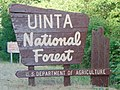 Uinta National Forest sign, Hobble Creek Canyon, Utah, Jul 16.jpg