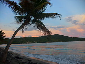 A Day Trip in Puerto Rico: El Yunque and Luquillo Beach
