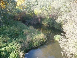 The river Salpe at Jucaiciai village. Photo:Lamata at lt.wikipedia