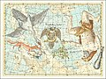 VIII. Hercules, Cygnus... Coelum Stellatum.jpg