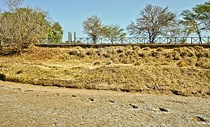 Protected areas of Brazil - Fossilised tracks in the Valley of the Dinosaurs, Paraíba