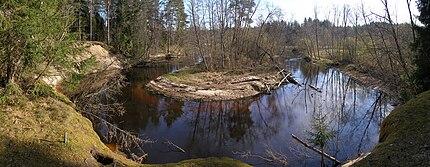 Valgejõgi 2009.jpg