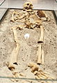 Vampire skeleton of Sozopol in Sofia PD 2012 16.JPG