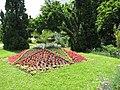 Vara in Gradina Botanica Cluj-Napoca (532227266).jpg