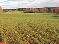 Vaughter's Farm ~ Guided Hikes Only - panoramio.jpg