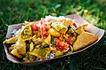 Vegetable Curry from Gorkha Palace at Twin Cities Veg Fest (37155957635).jpg