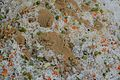 Vegetable Fried Rice - Simurali 2015-01-30 5262.JPG