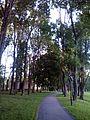 Veliky Novgorod, Novgorod Oblast, Russia - panoramio (108).jpg