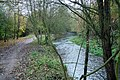 Ver River - Riverside walk Nr Drop Lane - geograph.org.uk - 1519793.jpg