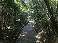 View from Bridge on sando between Upper Shrine and Lower Shrine of Usa Shrine 2.JPG